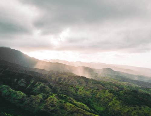 Oahu / Hawaii